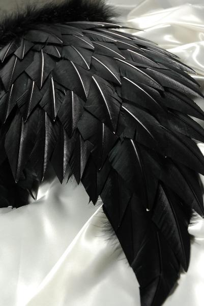 """Dark Angel Wings (Lg.) 32 x 31 1/2"""""""