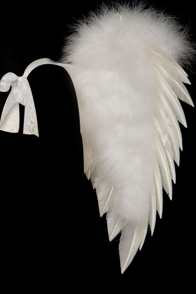 Wht. Angel Wings-Turkey Feath. with Lace tie strap (Med.)27 x 23