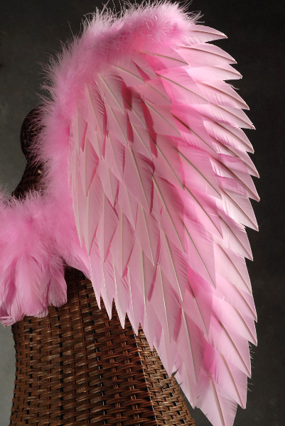 Pink Angel Wings 32 x 31 1/2 Victoria's Secret Pink Angel ...