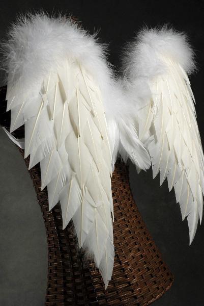 White Angel Wings Turkey Feathers 27 X 23 Joker Tattoo