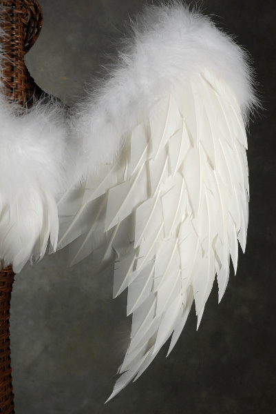 Cosmetics And Makeup: White Angel Wings (Lg.) 32 X 31 1/2 Victoria's Secret